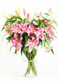 Pink lily flowers bouquet stock photos