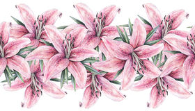 Pink lily flowers isolated on white background. Watercolor handwork illustration.   Seamless pattern frame border with lilies. Pink lily flowers isolated on Stock Image