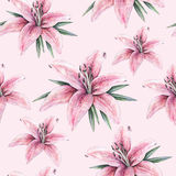 Pink lily flowers  on pink background. Seamless pattern with lilies for design. Pink lily flowers  on pink background. Watercolor handwork illustration. Drawing Stock Images