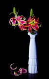 Pink lily flowers. Still life with pink lily flowers in a glass vase Stock Photography