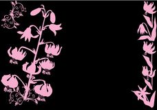 Pink lily silhouettes Royalty Free Stock Photos