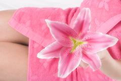 Pink lily in woman hand on pink towel. And legs Stock Photography