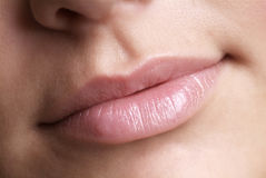 Pink lip royalty free stock photo