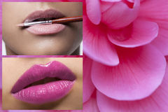 Pink Lips - Pink Flower Stock Photo
