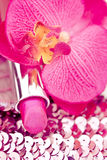 Pink lipstick on glitters with orchid Stock Images