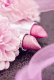 Pink lipsticks and flower petals Royalty Free Stock Images