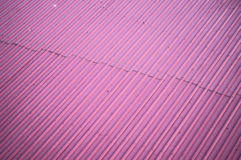 Pink Loof texture wallpapers and background Royalty Free Stock Image