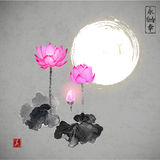 Pink lotos flowers and the moon. Royalty Free Stock Image