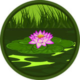 Pink lotus. The stylized image of a pink lotus in marsh water Royalty Free Stock Images