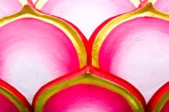 Pink lotus background Royalty Free Stock Image