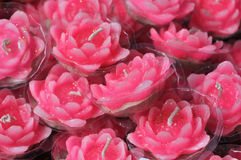Pink Lotus Candles Stock Photography