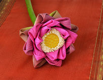 Pink Lotus flower Stock Images