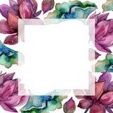 Pink lotus flower. Floral botanical flower. Frame border ornament square. Aquarelle wildflower for background, texture, wrapper pattern, frame or border stock illustration