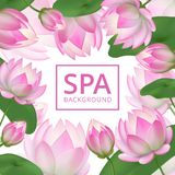 Pink lotus flowers background. Invitation healing to garden. Lotus wedding card vector template. Lotus flower pink, floral and nature banner for spa stock illustration
