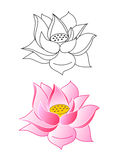 Pink lotus flowers. Coloring, vector illustration Royalty Free Stock Photo