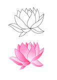 Pink lotus flowers. Coloring, vector illustration Royalty Free Stock Photos