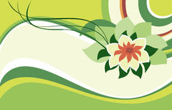 Pink lotus on a green background Stock Photography