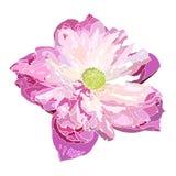 Pink lotus illustration,  flower vector Stock Image