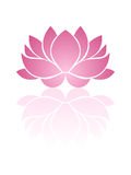 Pink lotus. Illustration of pink lotus with reflection Royalty Free Stock Images