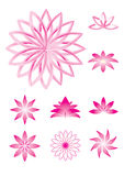 Pink lotus  illustrations Stock Photos