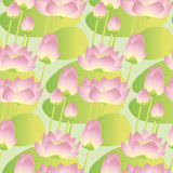 Pink lotus lilies decorative floral seamless pattern. vector ill Stock Image