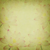 Pink lotus on the old grunge paper Royalty Free Stock Photography