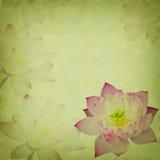 Pink lotus on the old grunge paper Royalty Free Stock Image