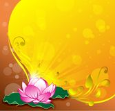 Pink lotus vector gold background Vector. Pink lotus vector gold background floral abstrac star light yellow color Royalty Free Stock Photos