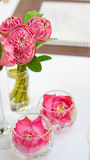 Pink lotus, water lily decorate in glass. Modern style theme for Royalty Free Stock Photography