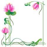 Pink Lotuses, Frame Royalty Free Stock Image