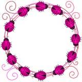 Pink Love Ladybugs Border Frame Stock Photos