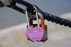 Pink Lovelock, Liverpool. Royalty Free Stock Images
