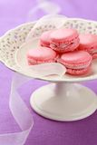 Pink macarons Stock Images