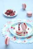 Pink Macarons filled with Red Berries Curd Stock Photography
