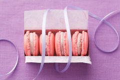 Pink macarons in gift box with ribbon Stock Image