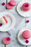 Pink macarons with vanilia cream Stock Images