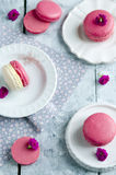 Pink macarons with vanilia cream Stock Photography