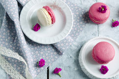 Pink macarons with vanilia cream Royalty Free Stock Photo