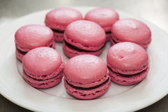 Pink macaroons Royalty Free Stock Photos