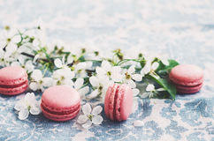 Pink macaroons and blooming cherry flowers at vintage tablecloth Royalty Free Stock Photography