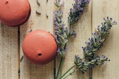Pink macaroons and natural flowers on light wooden table stock images