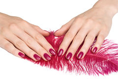 Pink manicure and accessories royalty free stock images