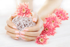 Pink manicure with chrysanthemum flowers. spa Stock Photos