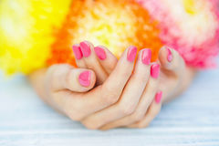 Pink manicure and daisy flower Royalty Free Stock Photos
