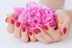 Pink manicure and a flower Royalty Free Stock Photo