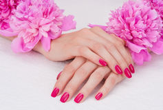 Pink manicure and flowers Stock Images
