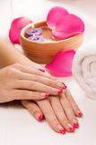 Pink manicure with fragrant rose petals Royalty Free Stock Photos