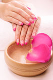 Pink manicure with fragrant rose petals Royalty Free Stock Images