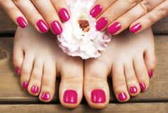Pink manicure and pedicure with flower close-up, on a wooden background, top view.  stock photography