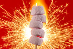 Pink Marshmallows on fire Stock Photography